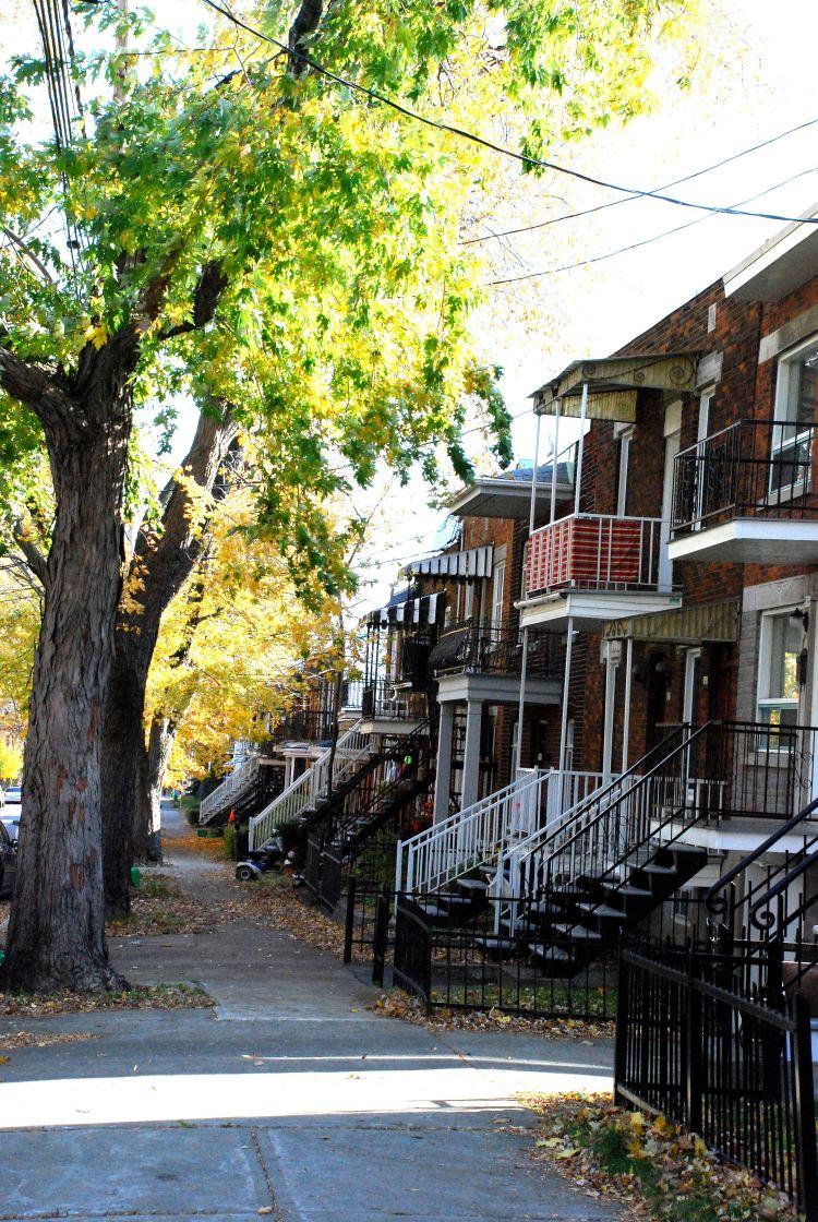 25 maisons typiq vertic