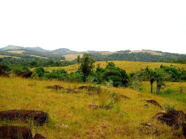341 paysage