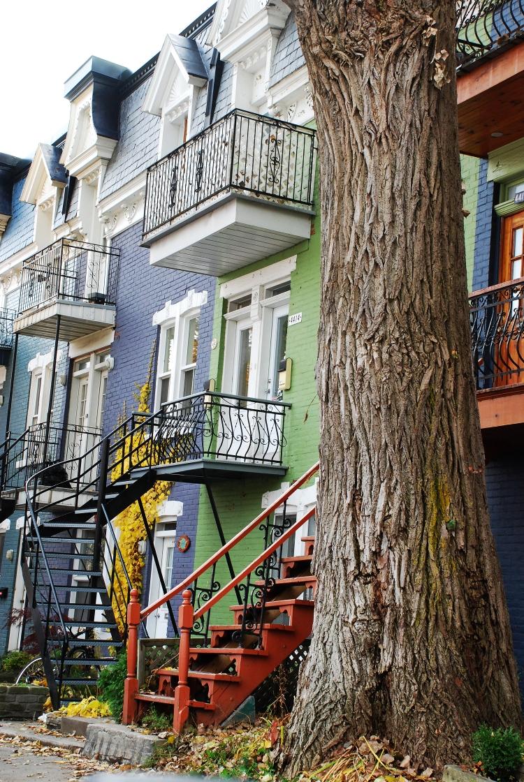 39 maisons colorees