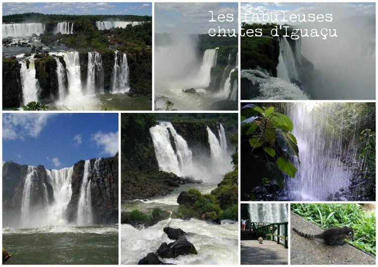 011 Iguaçu Papy Nicole  (déc 2001)