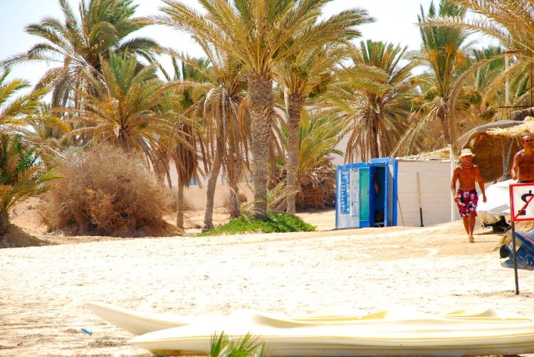 001 palmiers plage