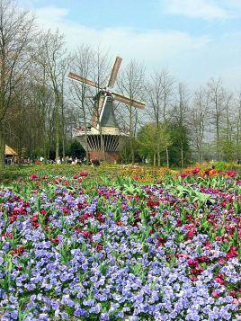 44 moulin